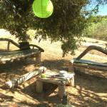 bancs et table avec bois flotté en corse